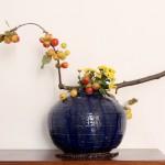 Melo ornamentale - crisantemo