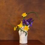 Aloe Iris e narciso