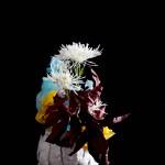 Crisantemo - aralia - carta