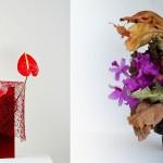 Ikebana di Anne Justo e Silvia Barucci